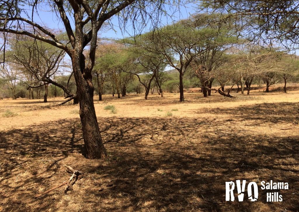 RVO Salama campsite