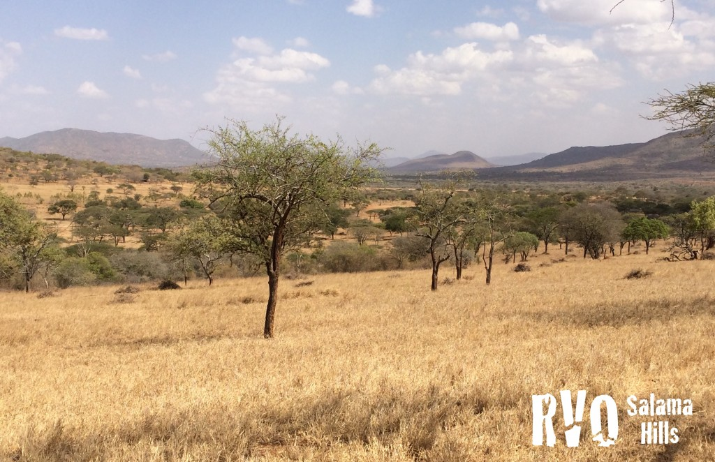 RVO Salama Hills